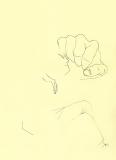 DESSINS jaune 15B