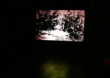 Exposition Ingres 06 2016