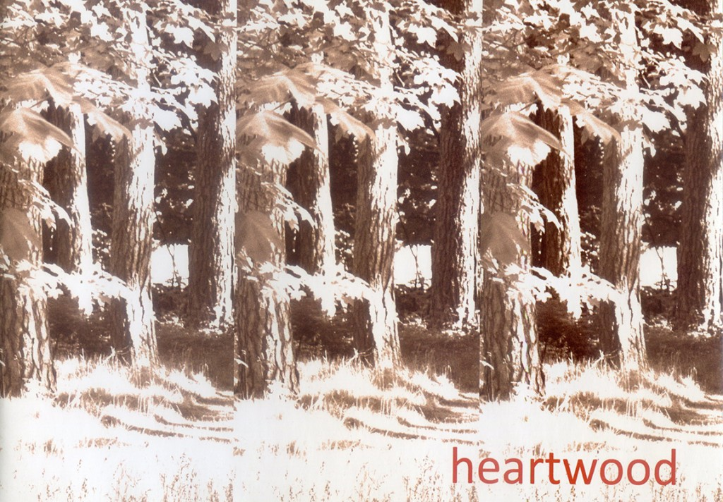 24 EVENT HEARTWOOD 2011