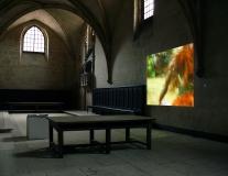 Expo Chartreuse Saint Sauveur 04